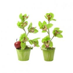 Composition artificielle 2 pots orchidée cymbidium 32cm