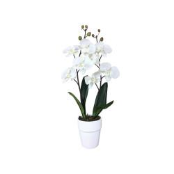 Composition artificielle Orchidée blanc 2 tiges - 60cm