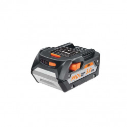 Batterie AEG 18V Lithium-ion 5.0Ah L1850R