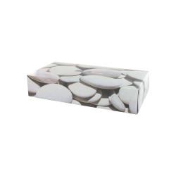 Boîte de 100 mouchoirs TECHLINE 2 plis blancs