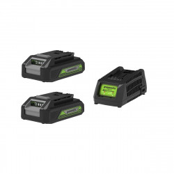 Pack GREENWORKS 24V - 2 batteries 2,0Ah Lithium-ion - 1 Chargeur
