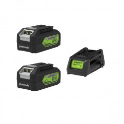 Pack GREENWORKS 24V - 2 batteries 4,0Ah Lithium-ion - 1 Chargeur