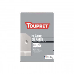 Plâtre de paris TOUPRET - Poudre - 1Kg - BCPLA01