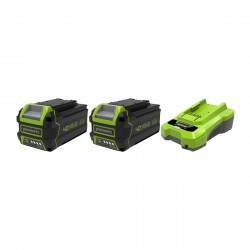 Pack GREENWORKS 40V - 2 batteries 6,0Ah Lithium-ion - 1 Chargeur