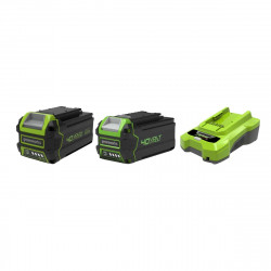 Pack GREENWORKS 40V - 2 batteries 6,0Ah et 4,0Ah Lithium-ion - 1 Chargeur